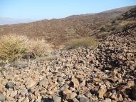 Basalt rock littered everywhere